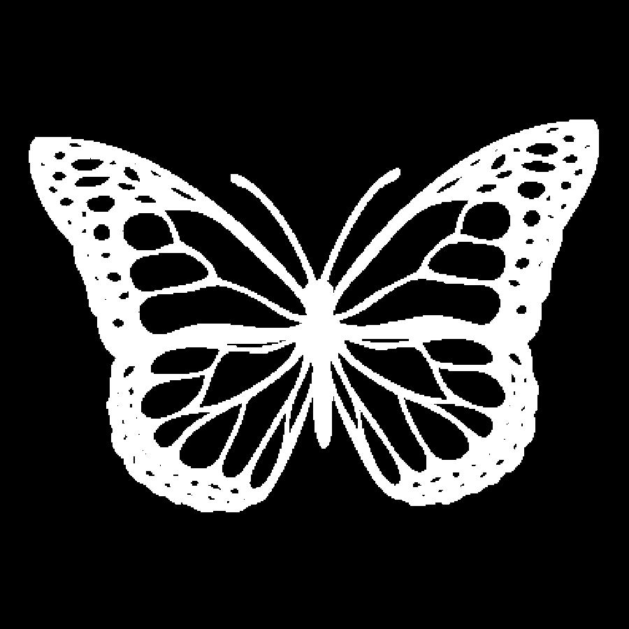 mariposa specialty coffee roasters icon bel
